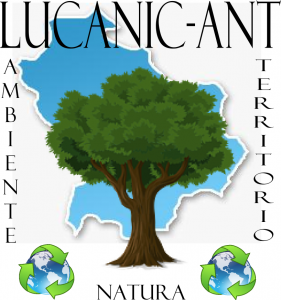 LucanicAnt